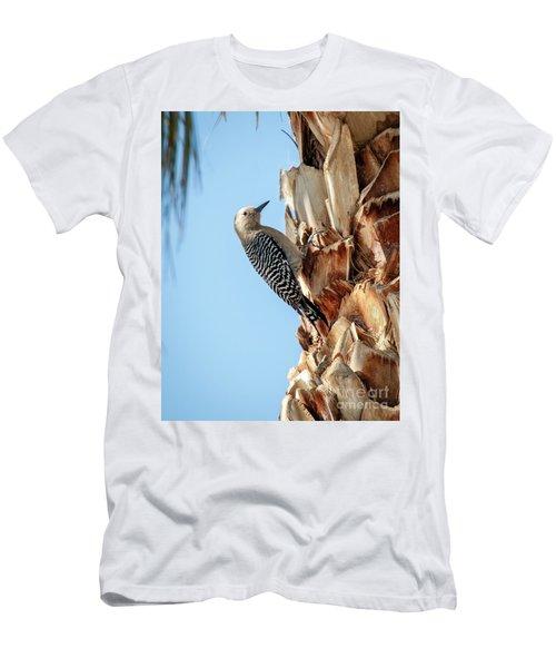 Gila Woodpecker Men's T-Shirt (Athletic Fit)