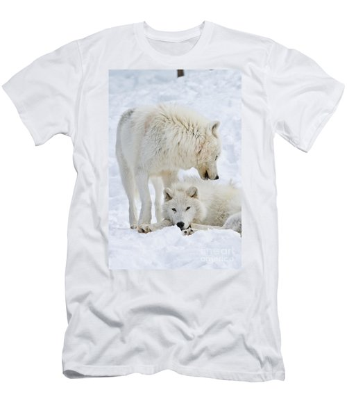 Arctic Wolves Men's T-Shirt (Athletic Fit)