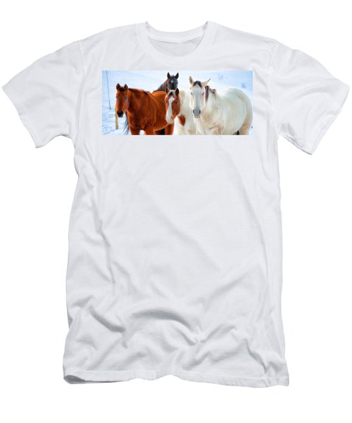 4 Horses Men's T-Shirt (Athletic Fit)