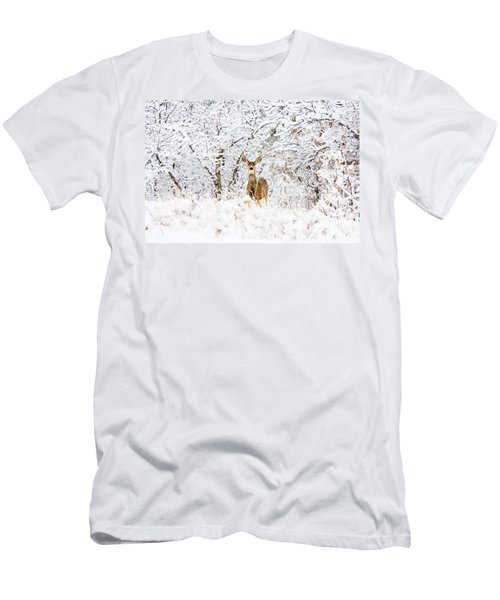 Doe Mule Deer In Snow Men's T-Shirt (Athletic Fit)