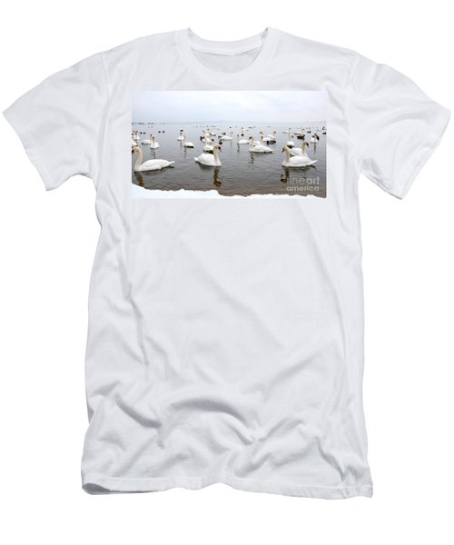 60 Swans A Swimming Men's T-Shirt (Athletic Fit)