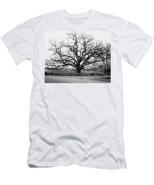 A Bare Oak Tree Men's T-Shirt (Athletic Fit)