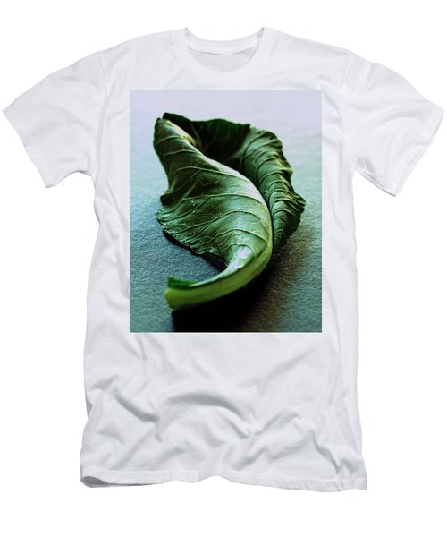 A Collard Leaf Men's T-Shirt (Athletic Fit)