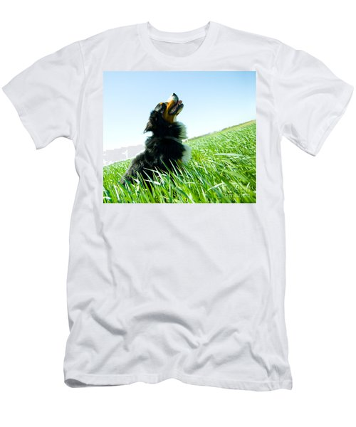 A Cute Dog On The Field Men's T-Shirt (Athletic Fit)