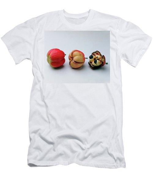 Ackee Fruit Development Men's T-Shirt (Athletic Fit)