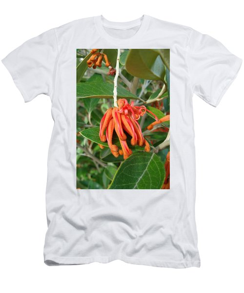 Men's T-Shirt (Slim Fit) featuring the photograph Adaptable Exotic by Cheryl Hoyle
