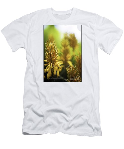Aloe 'kujo' Plant Men's T-Shirt (Athletic Fit)