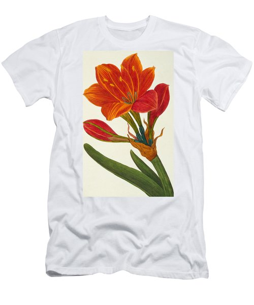Amaryllis Purpurea Men's T-Shirt (Athletic Fit)