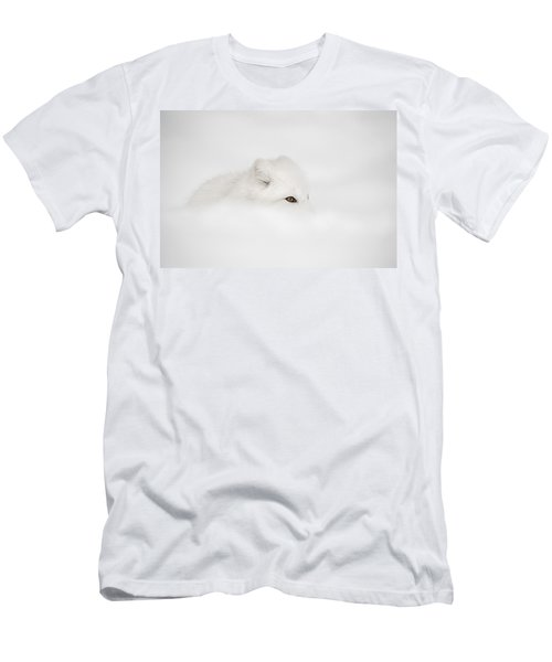Arctic Fox Men's T-Shirt (Athletic Fit)