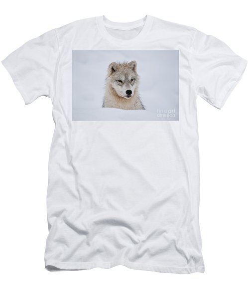 Arctic Pup In Snow Men's T-Shirt (Athletic Fit)