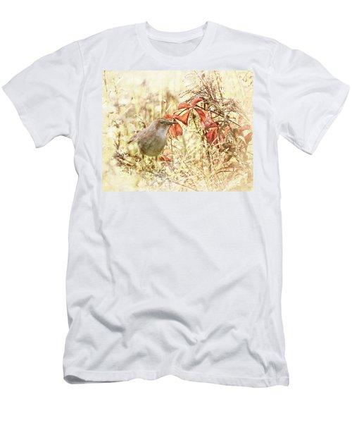 Autumn Catbird Men's T-Shirt (Athletic Fit)