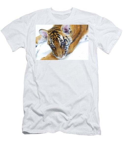 Baby Tiger Men's T-Shirt (Slim Fit) by Steve McKinzie