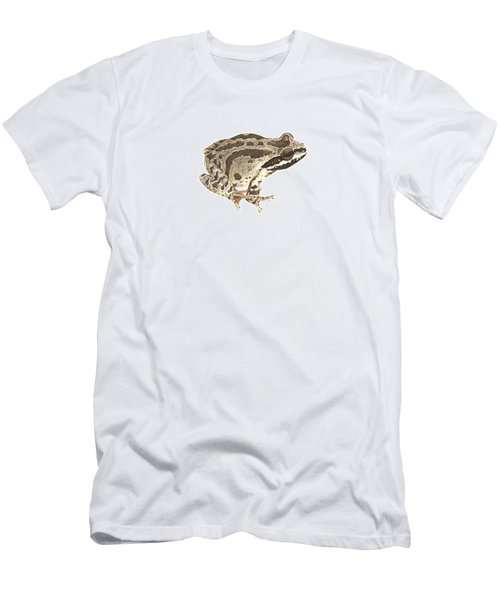 Baja California Treefrog Men's T-Shirt (Slim Fit) by Cindy Hitchcock