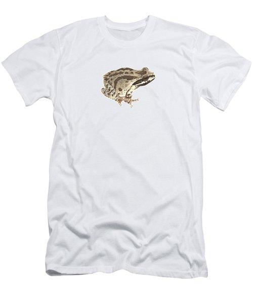 Baja California Treefrog Men's T-Shirt (Athletic Fit)