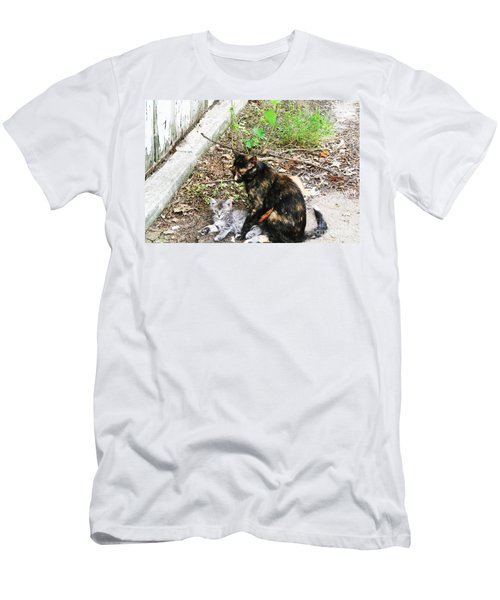 Barn Cats Men's T-Shirt (Slim Fit)