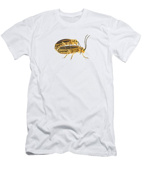 Chrysomelid Beetle Mating Pose Men's T-Shirt (Slim Fit) by Cindy Hitchcock