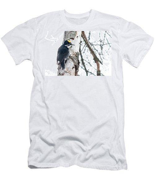 Black-backed Woodpecker Men's T-Shirt (Slim Fit) by Cheryl Baxter