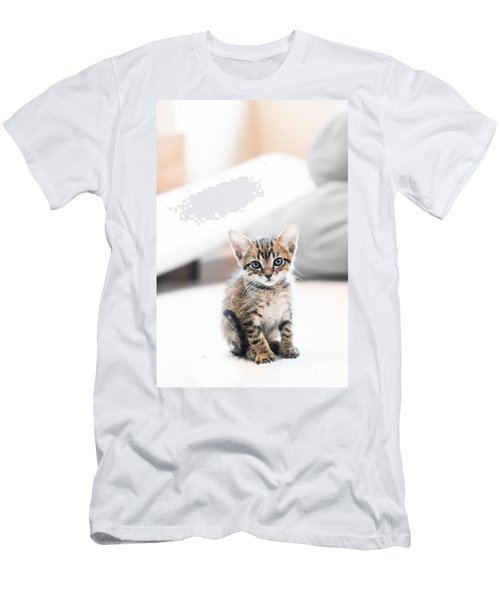 Blue Eyed Kitten Men's T-Shirt (Slim Fit) by Shelby  Young