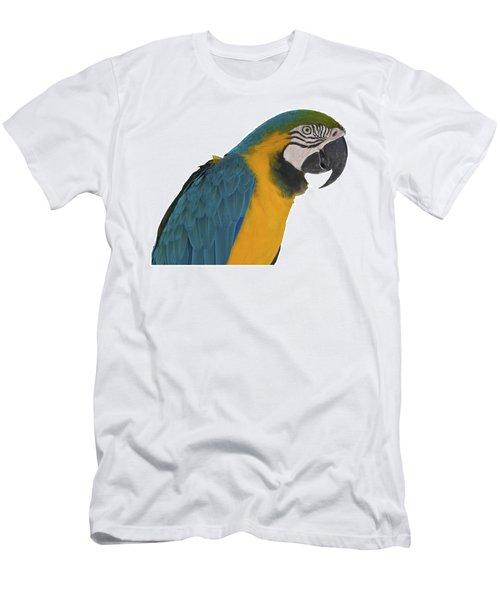 Blue Gold Macaw Men's T-Shirt (Athletic Fit)
