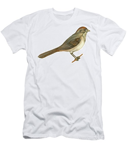 Brown Towhee Men's T-Shirt (Athletic Fit)