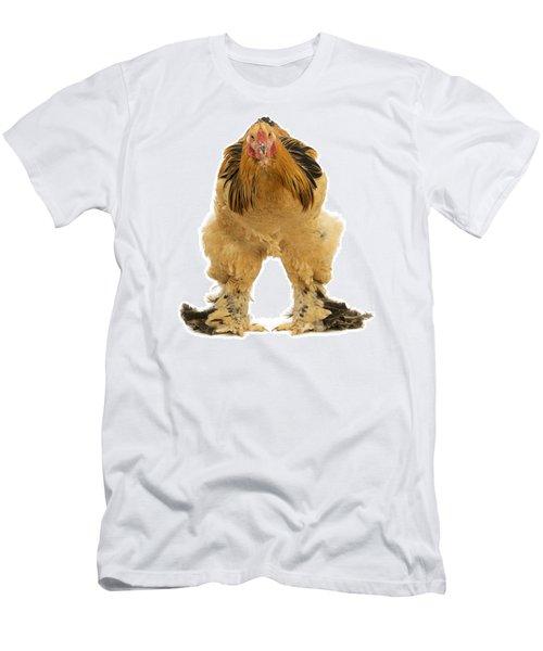 Buff Brahma Chicken Men's T-Shirt (Athletic Fit)