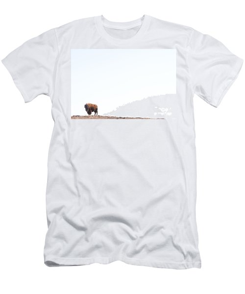 Buffalo Country Men's T-Shirt (Athletic Fit)