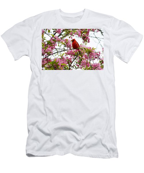 Cardinally Beautiful Men's T-Shirt (Athletic Fit)