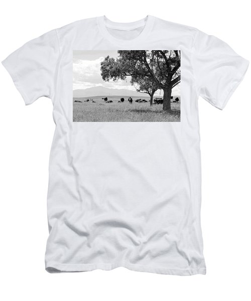 Men's T-Shirt (Slim Fit) featuring the photograph Cattle Ranch In Summer by Clarice  Lakota