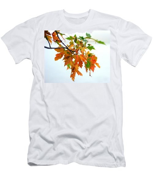 Changing Seasons Men's T-Shirt (Athletic Fit)