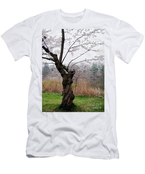 Cherry Blossom Time Men's T-Shirt (Slim Fit) by Nina Silver
