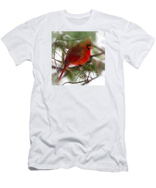 Christmas Cardinal Men's T-Shirt (Slim Fit) by Kerri Farley