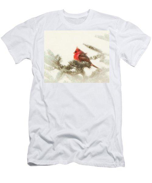 Christmas Cardinal Men's T-Shirt (Athletic Fit)