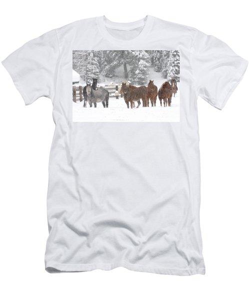 Cold Ponnies Men's T-Shirt (Athletic Fit)