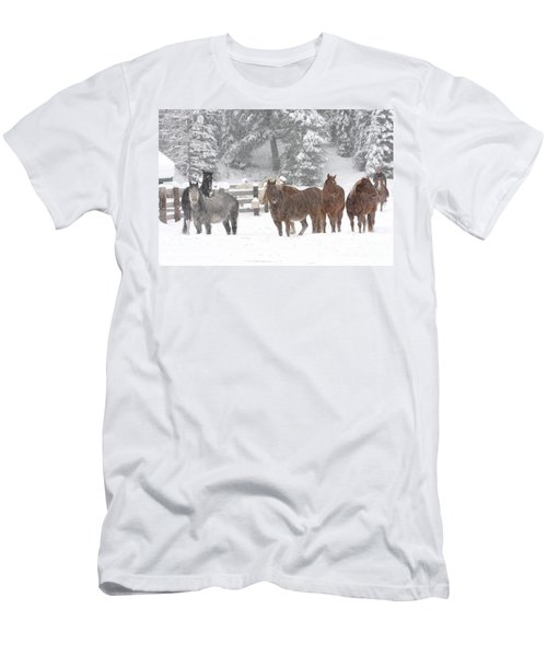 Cold Ponnies Men's T-Shirt (Slim Fit)