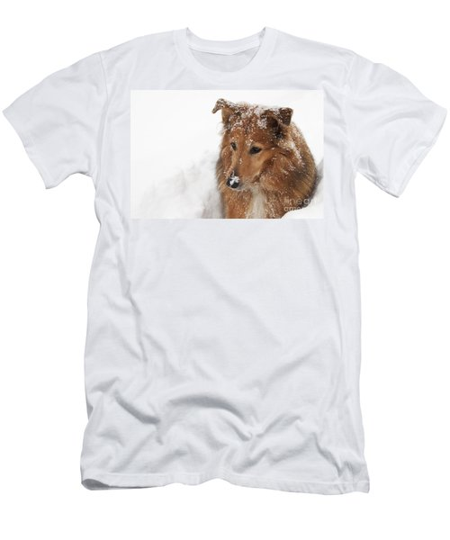 Collie In The Snow Men's T-Shirt (Athletic Fit)