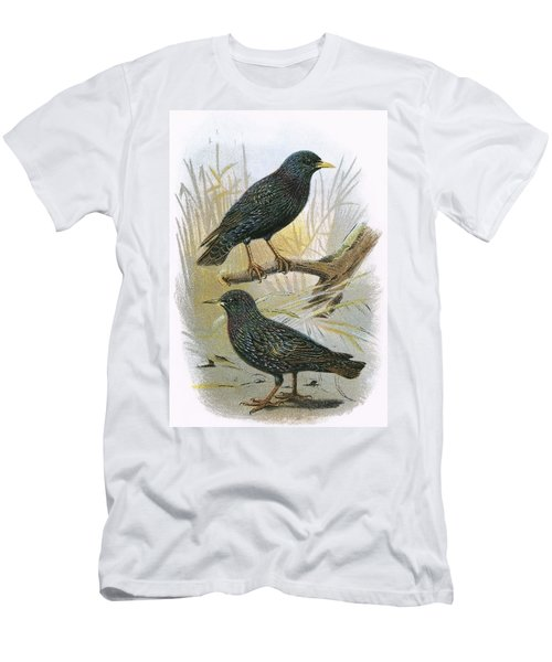 Common Starling Top And Intermediate Starling Bottom Men's T-Shirt (Athletic Fit)