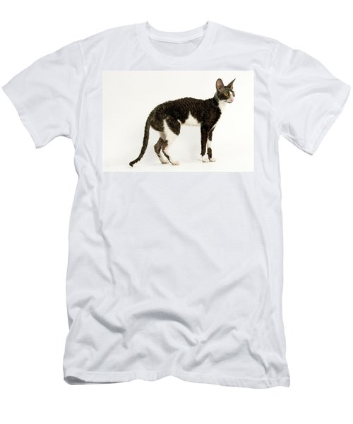 Bicolor Cats T-Shirts | Fine Art America