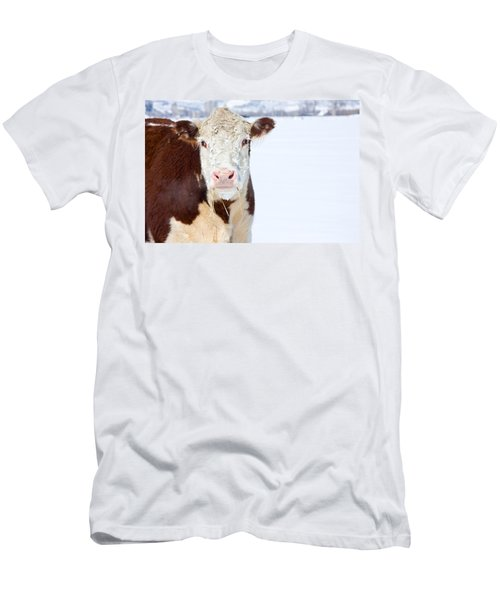 Cow - Fine Art Photography Print Men's T-Shirt (Athletic Fit)