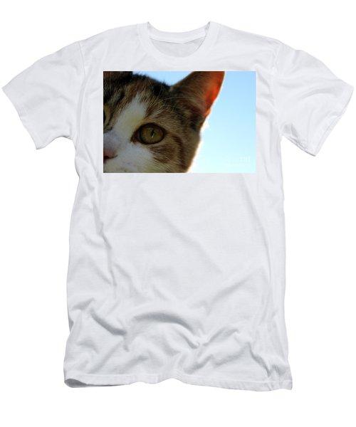 Curious Cat Men's T-Shirt (Athletic Fit)