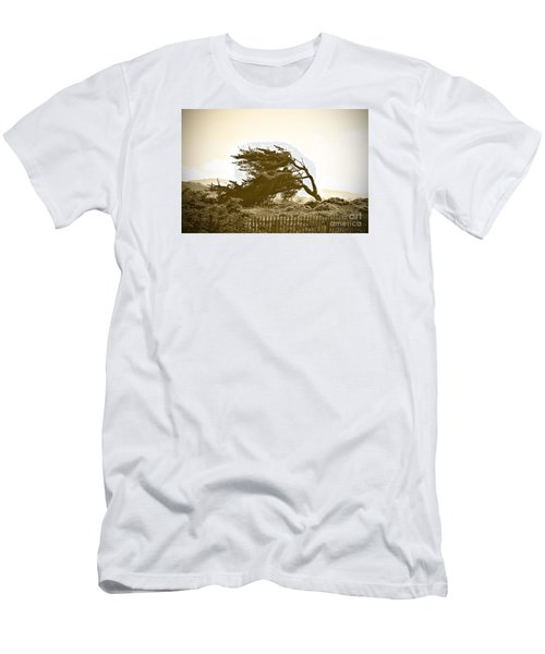 Cypress Trees In Monterey Men's T-Shirt (Athletic Fit)