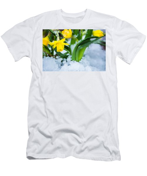 Daffodils In The Snow  Men's T-Shirt (Athletic Fit)