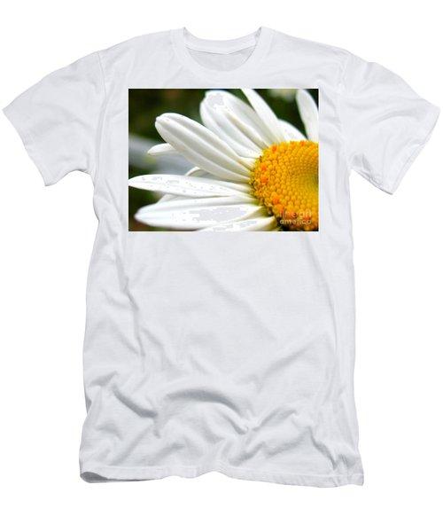 Daisy Men's T-Shirt (Slim Fit) by Patti Whitten