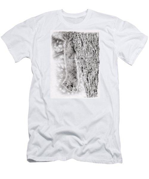 Dangling Squirrel Men's T-Shirt (Athletic Fit)
