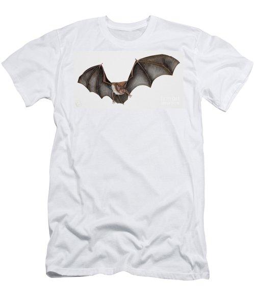 Daubentons Bat Myotis Daubentonii - Murin De Daubenton-murcielago Ribereno-vespertilio Di Daubenton Men's T-Shirt (Athletic Fit)