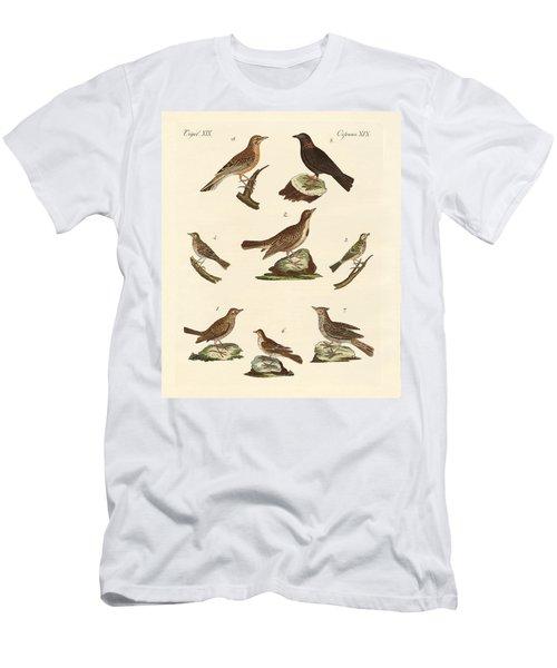 Different Kinds Of Larks Men's T-Shirt (Athletic Fit)