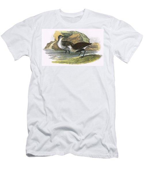 Dunlin Men's T-Shirt (Athletic Fit)