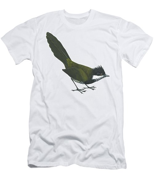 Eastern Whipbird Men's T-Shirt (Athletic Fit)