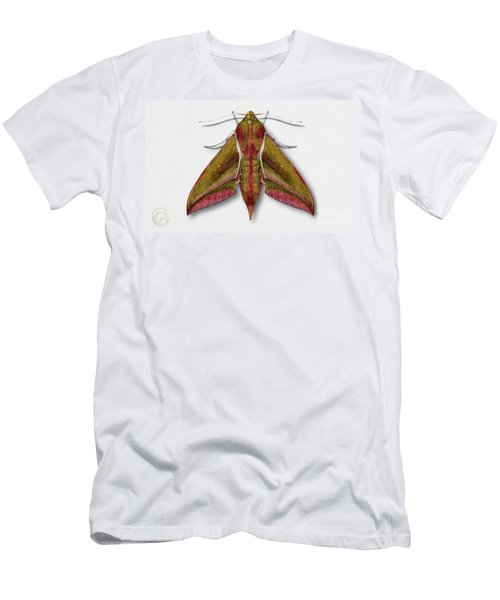 Elephant Hawk Moth Butterfly - Deilephila Elpenor Naturalistic Painting - Nettersheim Eifel Men's T-Shirt (Athletic Fit)