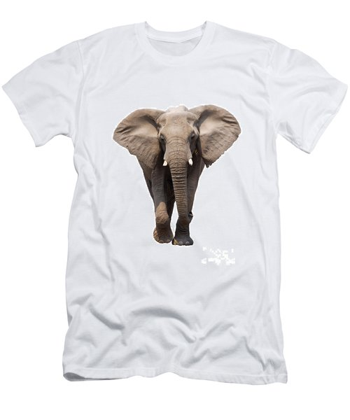 Elephant Isolated Men's T-Shirt (Athletic Fit)