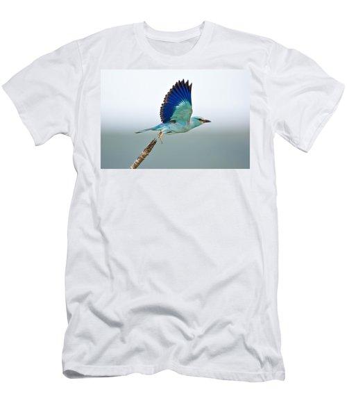 Eurasian Roller Men's T-Shirt (Athletic Fit)